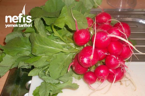 Kırmızı Turp Yaprağı Salatası  Foto 1