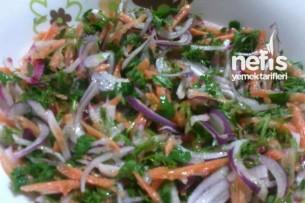 Karışık Kırmızı Soğan Salatası Tarifi