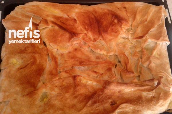 Ispanaklı Böreğin Yapılışı Tarifi