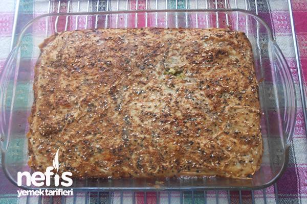 Fırında Kolay Sebzeli Mücver Böreği 5