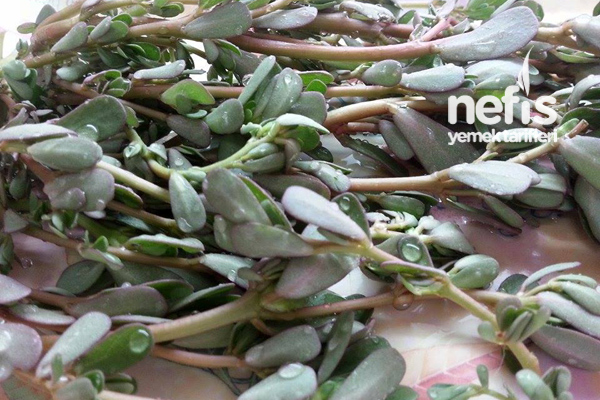 Pirpirim Salatası (Semizotu Salatası) 1