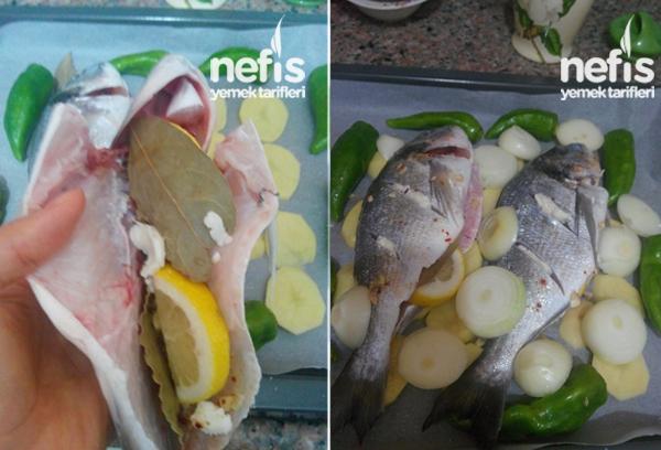 Fırında Çupra Balığı 2