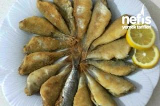 Mısır Unlu Mercan Balığı Kızartması Tarifi