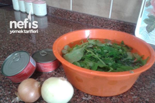 Ton Balıklı Salata 1