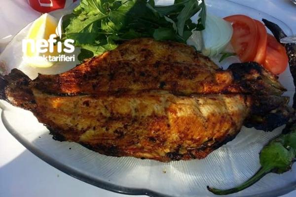 Sazan Balığı Tarifi