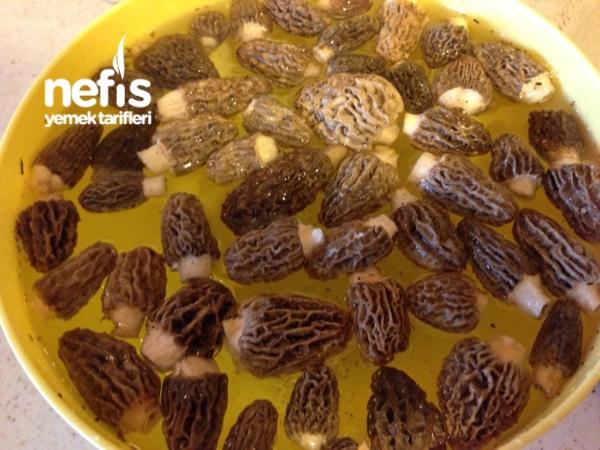 Tavada Kolay Su Böreği Tarifi Videosu