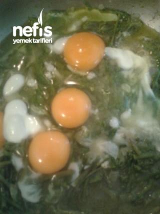 Yumurtalı Sarmaşık Kavurmasi