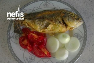 Tavada Çipura Balığı Tarifi