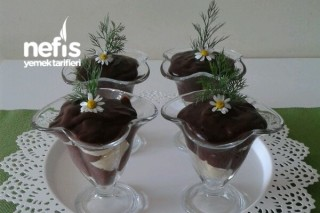 Çikolatalı Mognalia