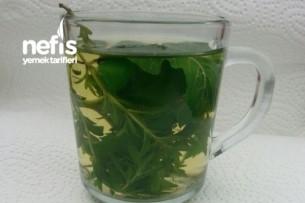 Taze Ot Çayı Tarifi