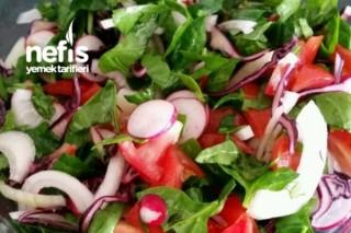 Ispanaklı Çoban Salatası Tarifi