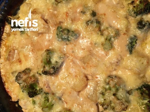 Tavuk Brokoli Patates Graten