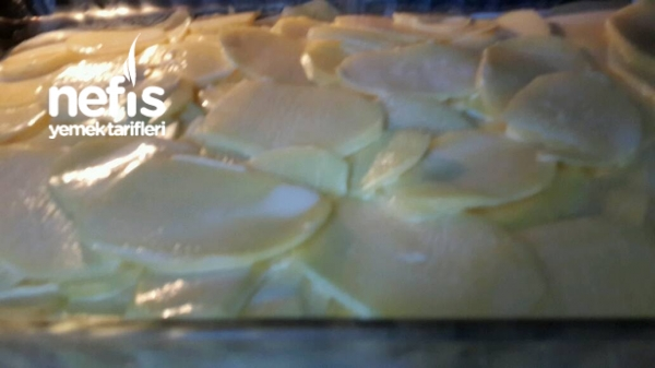 Kremalı Fırın  Patates