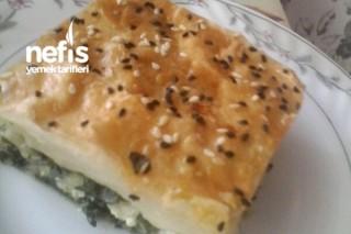 Ispanaklı Peynirli Tepsi Böreği Tarifi