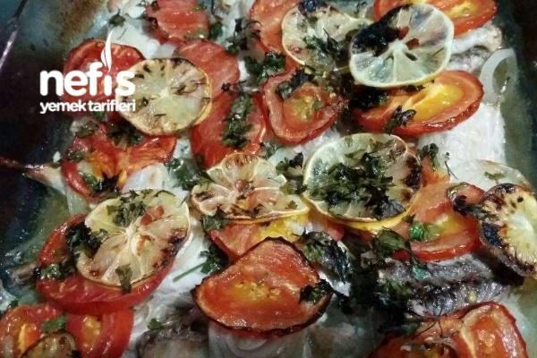 Fırında Torik Balığı Tarifi