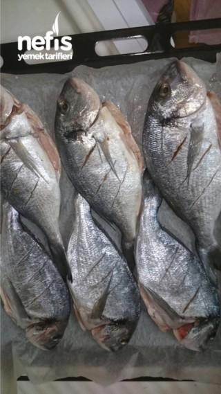 Fırında Lezzetli Soslu Balık