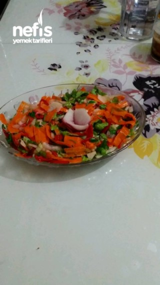 Turşulu kış salatam
