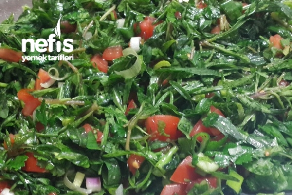 Taze Kekik Salatası