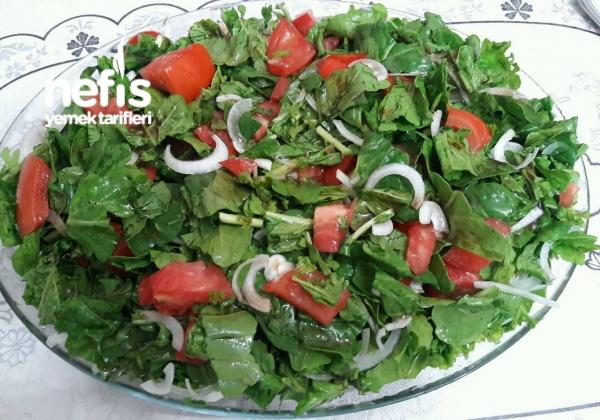 Roka Salatası