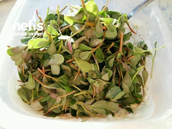 Tavuklu Cevizli Semizotu Salatası