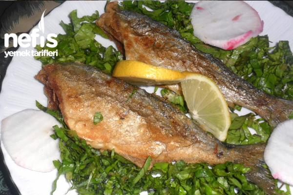 Tavada Sarıkanat Balığı