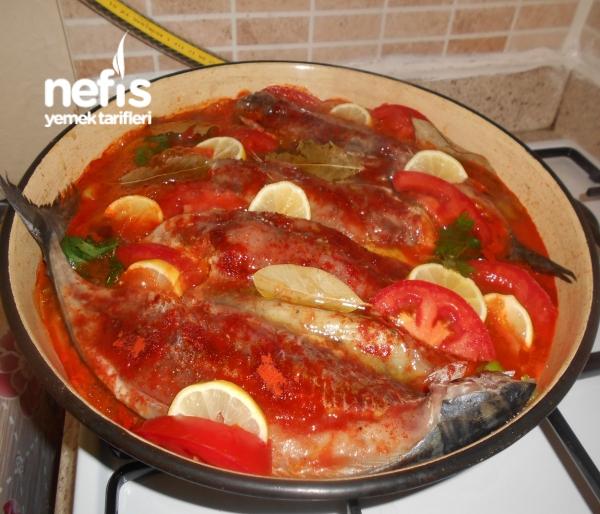 Fırında Palamut Balığı