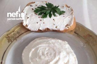 Evde Labne Peynir Yapımı Tarifi