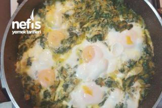 Yumurtalı Sebzeli Ispanak Tarifi
