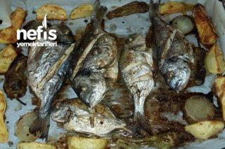 Fırında Balık (Çupra) Tarifi