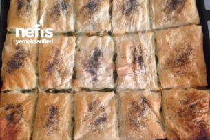 Ispanaklı Havuçlu Çıtır Börek Tarifi
