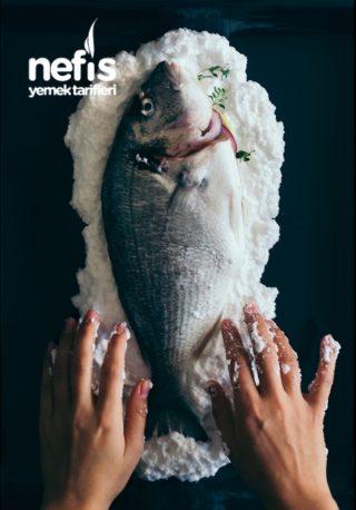 Tuzda Balık