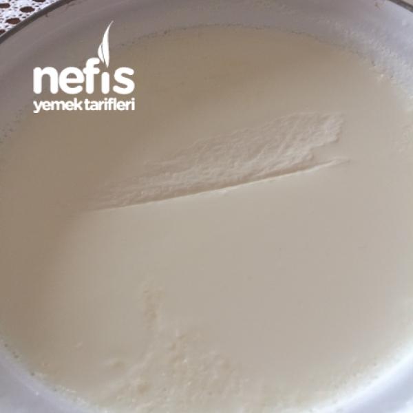 Probiyotik Yoğurt(tam Kıvamında)