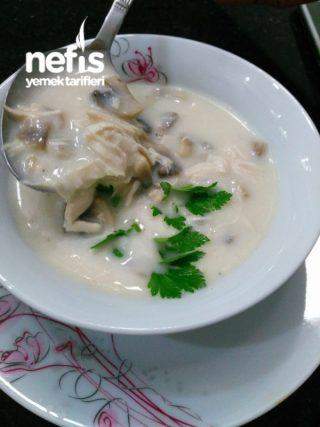Mantar Çorbası (kremalı Ve Tavuklu)