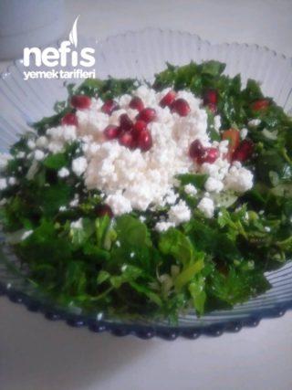 Bol bol yiyebilirim diyet salatası