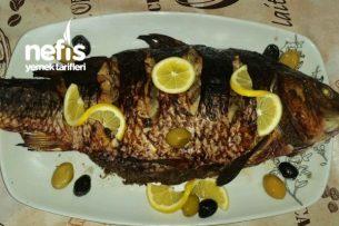 Sazan Balığı Levengisi (Azeri Mutfağı) Tarifi