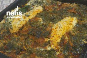 Fırında Tavuklu Pazı Yemeği Tarifi