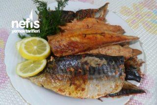 Buharda Uskumru (Balığın En Pratik Ve Lezzetli Hali) Tarifi