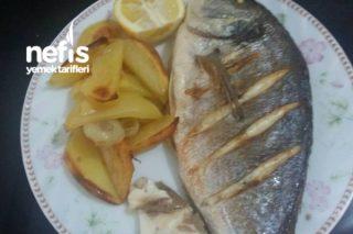 Fırında Çipura Balığı Tarifi
