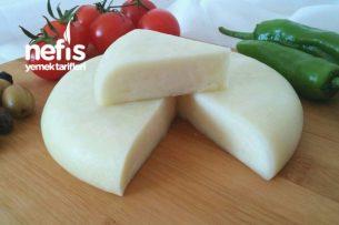 Evde Kaşar Peyniri Yapımı (Aşama Aşama Fotoğraflı) Tarifi