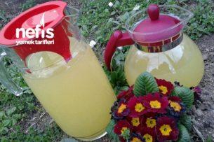 Limonatam 2 ( Buzluktan) Tarifi
