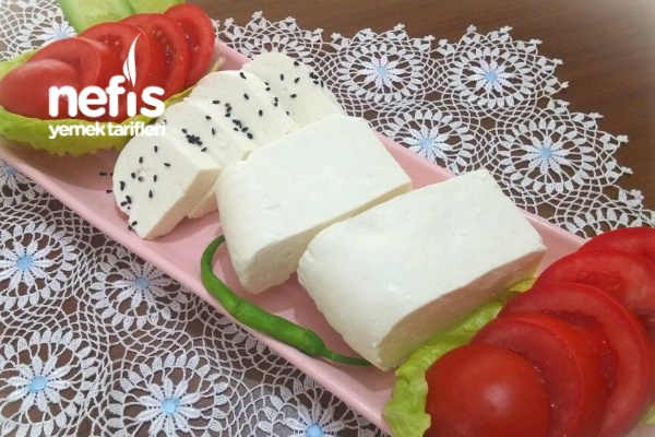 Hakiki Beyaz Peynir Yapımı (Aşama Aşama Fotoğraflı)