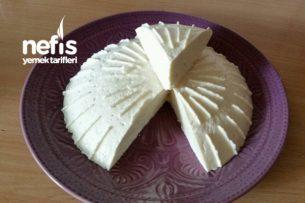 Ev Yapımı Peyniri Tarifi
