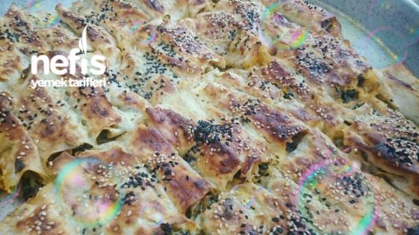 Kolay Ispanaklı Sarma Börek