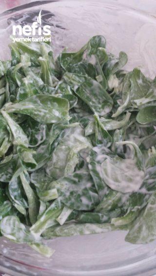 Yoğurtlu Kuzu Marul Salatası