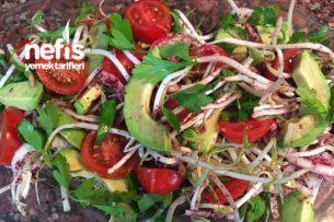 Soya Filizli Avokado Salatası Tarifi