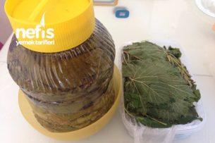 Salamurada  Ve Buzlukta Üzüm yaprağı (Tüm Püf Noktasıyla) Tarifi