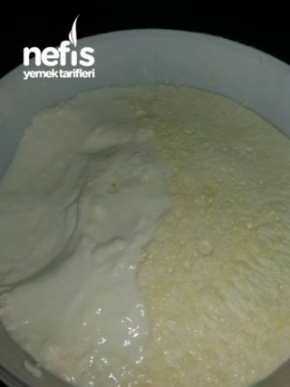 Dogal Evyapımı Yoğurt