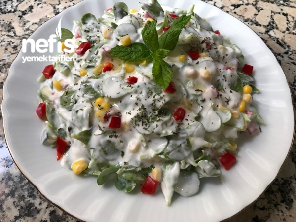 Ferah Renkli Semizotu Salatası