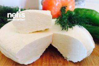 Ev Yapımı Pratik Peynir Tarifi