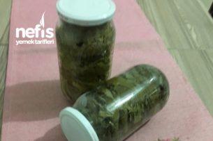 Tek Malzemesi Kavanoz Olan Asma Yaprağı (Kış Hazırlığı) Tarifi
